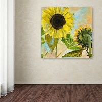 Trademark Fine Art Soleil I Canvas Wall Art