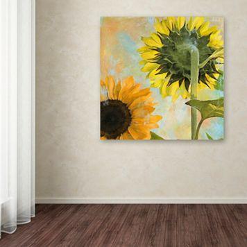 Trademark Fine Art Soleil II Canvas Wall Art
