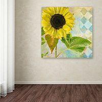 Trademark Fine Art Soleil III Canvas Wall Art