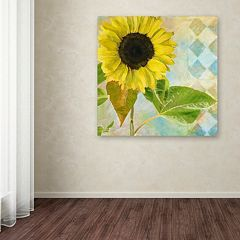 Trademark Fine Art Soleil III Canvas Wall Art