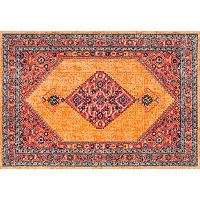 nuLOOM Stone Washed Dortha Vintage Framed Medallion Rug