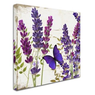 Trademark Fine Art Lavender I Canvas Wall Art