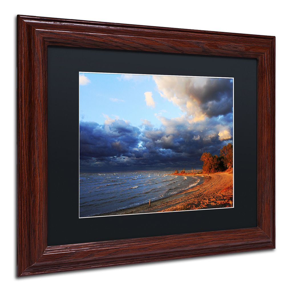 Trademark Fine Art Lake Erie Autumn Framed Wall Art