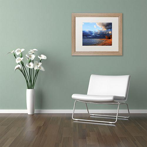 Trademark Fine Art Lake Erie Autumn Distressed Framed Wall Art