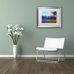 Trademark Fine Art Lake Erie Autumn Silver Finish Framed Wall Art