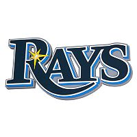 Tampa Bay Rays 3D Fan Foam Logo Sign