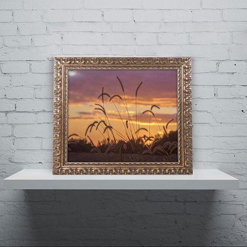 Trademark Fine Art Weeds Ornate Framed Wall Art
