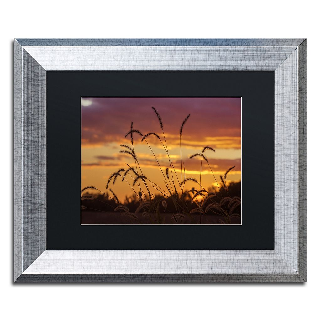 Trademark Fine Art Weeds Silver Finish Framed Wall Art