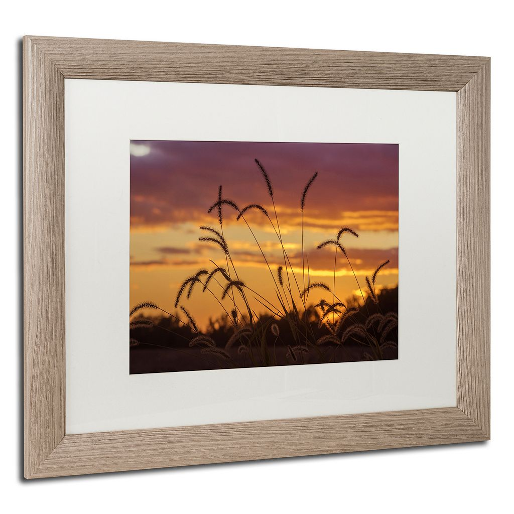 Trademark Fine Art Weeds Distressed Framed Wall Art