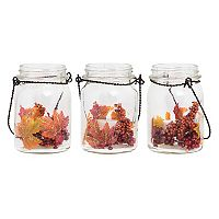 Apothecary Harvest Light-Up Mason Jar Table Decor 3-piece Set