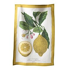 KAF HOME Flour Sack Kitchen Towel 2-pk.