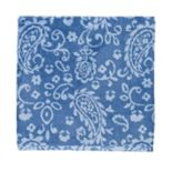 SONOMA Goods for Life™ Ultimate Performance Hygro® Paisley Bath Towel