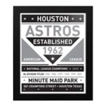 Houston Astros Black & White Framed Wall Art