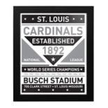 St. Louis Cardinals Black & White Framed Wall Art