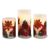 Apothecary Poinsettia Flameless LED Candle & Remote 4 pc Set