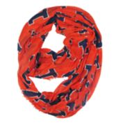 Illinois Fighting Illini Logo Infinity Scarf