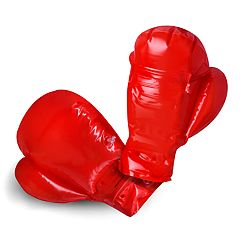 Protocol Upper Cuts Inflatable Boxing Gloves