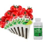 Miracle-Gro AeroGarden Red Heirloom Cherry Tomato 6-Pod Seed Kit