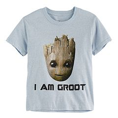 Boys 4-7 Guardians of the Galaxy 'I Am Groot' Baby Groot Tee