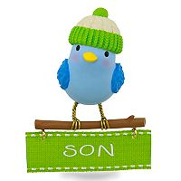 Winter Bird Son 2017 Hallmark Keepsake Christmas Ornament