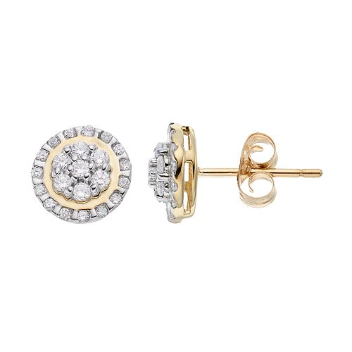 10k Gold 1/3 Carat T.W. Diamond Flower Stud Earrings
