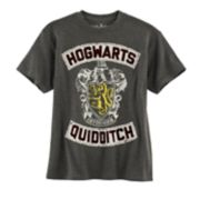 Boys 8-20 Harry Potter Hogwarts Quidditch Tee