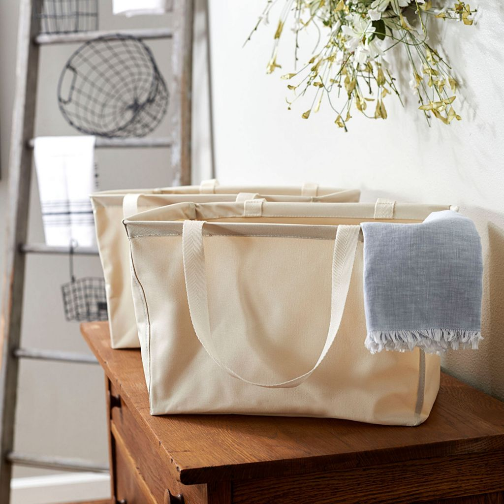 Household Essentials 2-pack Mini Krush Tote Bags