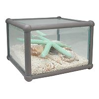SONOMA Goods for Life™ Artificial Starfish Table Decor