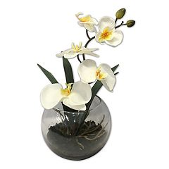 SONOMA Goods for Life™ Artificial Orchid Arrangement Table Decor