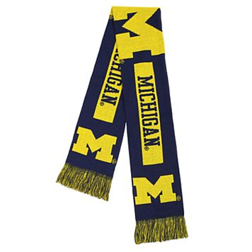 Adult Forever Collectibles Michigan Wolverines Big Logo Scarf