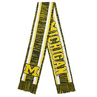 Forever Collectibles Michigan State Spartans Knit Scarf