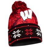 Adult Forever Collectibles Wisconsin Badgers Light Up Beanie