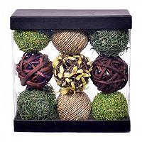 SONOMA Goods for Life™ Botanical & Grass Ball Vase Filler 9-piece Set