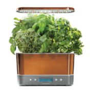 AeroGarden Harvest Elite with Gourmet Herb Seed Pod Kit