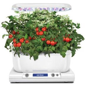 Miracle-Gro AeroGarden Harvest LED with Gourmet Herb Seed Pod Kit