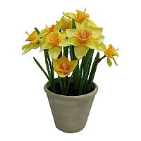 SONOMA Goods for Life™ Potted Artificial Daffodil Flower Arrangement