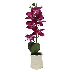 SONOMA Goods for Life™ Potted Artificial Orchid Stem Flower Arrangement
