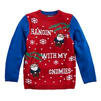 Boys 8-20 Christmas Gnomes Sweater