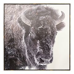 New View Snow Buffalo Framed Canvas Wall Art