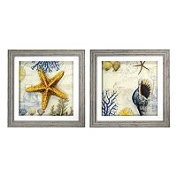 New View Antique Shells Framed Wall Art 2-piece Set