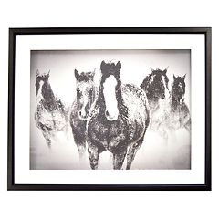 New View Black & White Horses Framed Wall Art