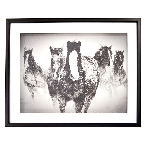 New View Black & White Horses Framed Wall Art