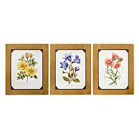 New View Floral Wall Art 3 pc Set