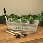 Gerson Parsley & Thyme Herb Garden 6-piece Set