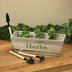 Gerson Parsley & Thyme Herb Garden 6 pc Set