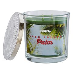 SONOMA Goods for Life™ Lush Island Palm 14-oz. Candle Jar