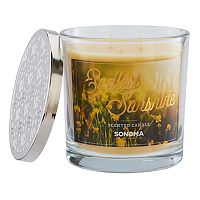 SONOMA Goods for Life™ Endless Sunshine 14-oz. Candle Jar