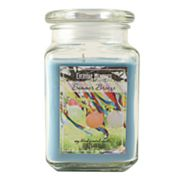 Everyday Memories Summer Breeze 17-oz. Candle Jar