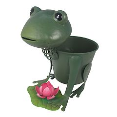 Celebrate Together Indoor / Outdoor Frog Planter