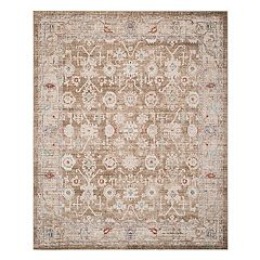Safavieh Windsor Tessa Framed Floral Rug